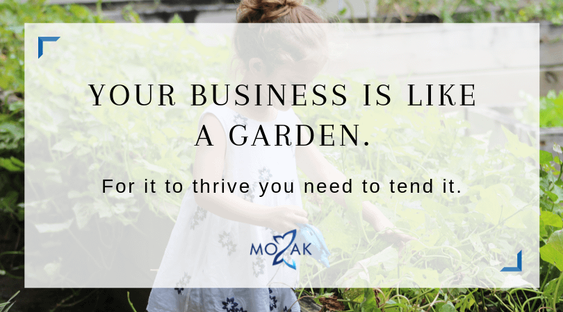 thriving-business